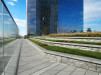 Thumbnail 2 - Cira Green - Roofmeadow - Green roofs. For good.