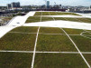 Thumbnail 2 - Music City Center - Roofmeadow - Green roofs. For good.