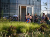 Thumbnail 6 - Cira Green - Roofmeadow - Green roofs. For good.